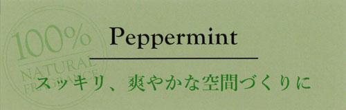 贅沢エッセンシャルオイルのリードディフューザー,ペパーミント,スッキリ、爽やかな空間づくりに