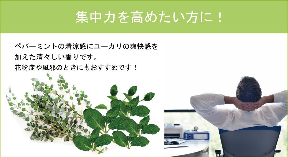 天然ルームフレグランス「木と果」,ミント&ユーカリ,集中力を高め、花粉症や風邪のときにも!