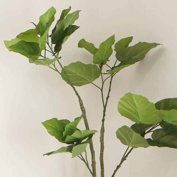 お手入れ不要!,フェイクグリーンセット,人気のウンベラータ,ハート形の葉っぱが特徴的