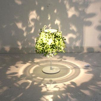 フォレスティ|テーブルランプ|葉の影に濃淡の変化が生まれます